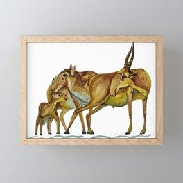 Family of Saiga Antelope (Watercolour) Framed Mini Art Print