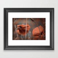 Oh ! My Poppy ! Framed Art Print