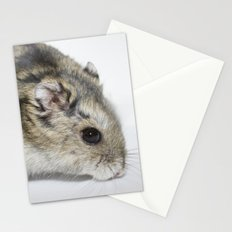 cheesecake (my hamster)  Stationery Cards