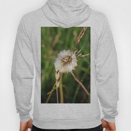 beauty faded thistle Hoody