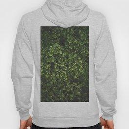 hedge Hoody