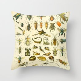 "Adolphe Millot ""Insectes"" Nouveau Larousse 1905 Throw Pillow"