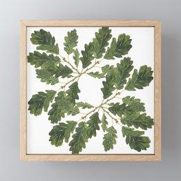 Oak leaf ensemble Framed Mini Art Print