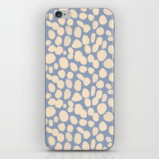 Pebbles iPhone & iPod Skin