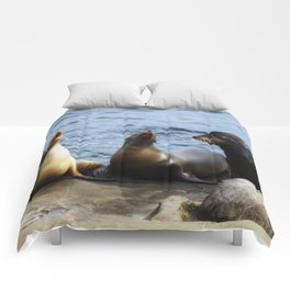 Singing Lessons Comforters