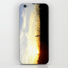 Sunset Behind the Fence iPhone & iPod Skin