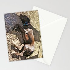 Sleepy Alaska Stationery Cards