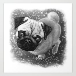 Pug in Pencil Art Print