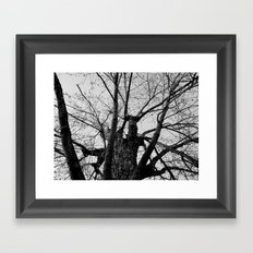 Youth Upon My Limbs II Framed Art Print