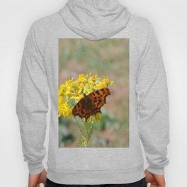 Comma Butterfly Hoody