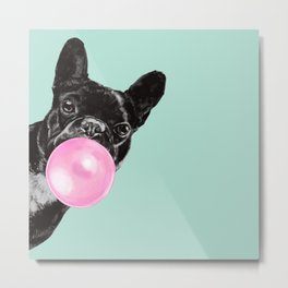 Bubble Gum Sneaky French Bulldog in Green Metal Print