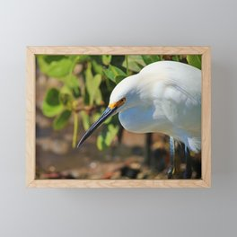 The Look Framed Mini Art Print