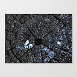 Wood post texture Canvas Print
