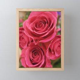Pink Rose 7 Framed Mini Art Print