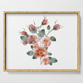 Botanical vector illustration with wild pink rose isolated on white Serving Tray