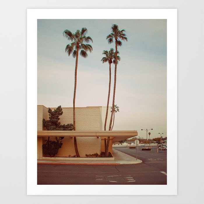 Three Palms (pt. 2) Art Print