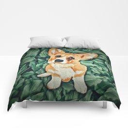 Mia the Corgi Comforters