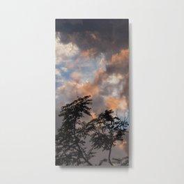 Mainzer Sky Metal Print