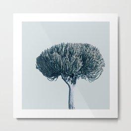 Monochrome - Candelabra tree Metal Print