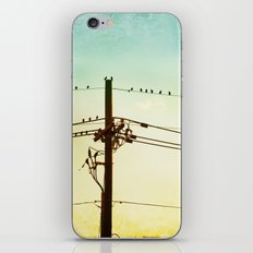 Yellow Mint Bird on Wire Photography, Turquoise Teal Birds on a Telephone Wire iPhone & iPod Skin