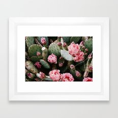PINK CACTUS FLOWER ABSTRACT CLUSTER PATTERN Framed Art Print
