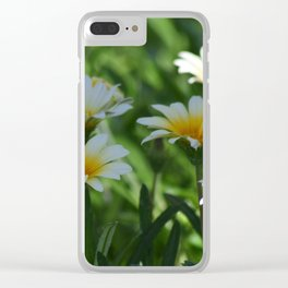 Dainty Daisies By The Half Dozen Clear iPhone Case