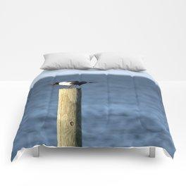 Ocracoke Seagull 3 Comforters