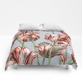 Semper Augustus Tulips Comforters