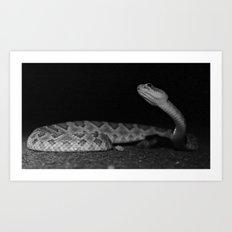 Dancing Snake Art Print