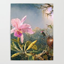 Nature's Fantasy : Cattyela Orchid and Three Brazilian Hummingbirds Poster