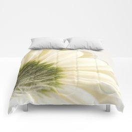 Gerbera Daisy Comforters