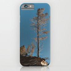 Hanging On iPhone 6s Slim Case