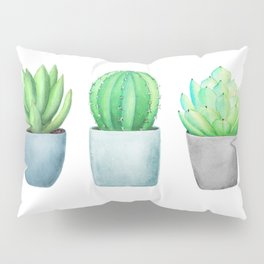 Succulent and Cacti Potted Garden Trio Pillow Sham