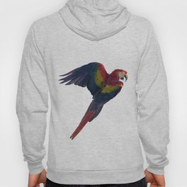 Light and Shadow Scarlet Macaw Hoody