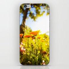 Garden Flowers iPhone & iPod Skin