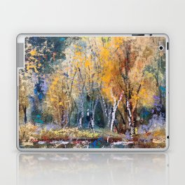 The Pond's Reflections Laptop & iPad Skin
