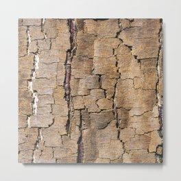 Brown tree trunk Metal Print