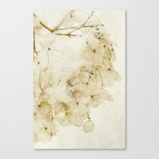 after the snow Canvas Print