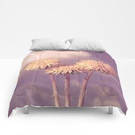 Company of Three Comforters