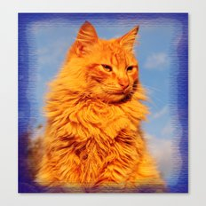 Red cat in the blue Canvas Print