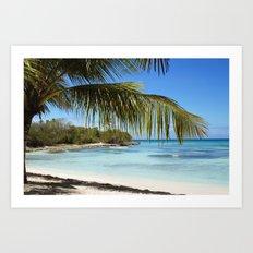 Tropical Island Beach palm tree Art Print