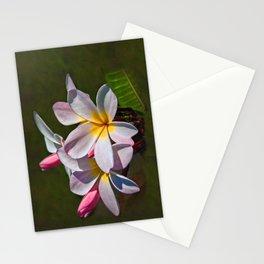 Hula Flower Stationery Cards