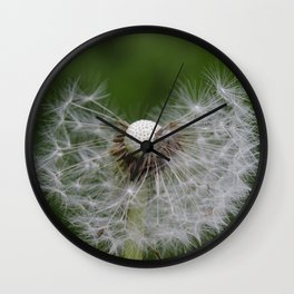 Incomplete dandelion Wall Clock