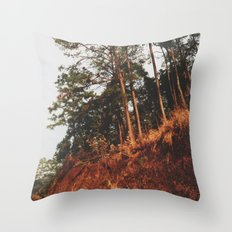 Lonely Summer Road Throw Pillow