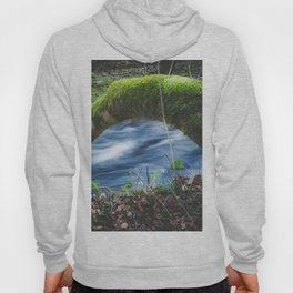 Enchanted magical forest Hoody