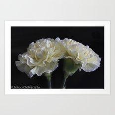 Ruffled Carnations Art Print