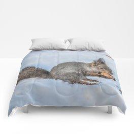 Hard nut to crack Comforters