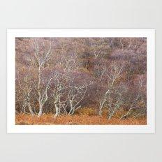 Autumnal Scotland Art Print