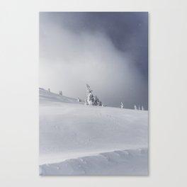 Near the Summit Canvas Print