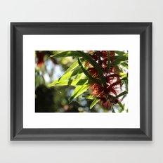 Flower Power 1 Framed Art Print